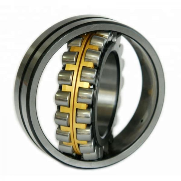NSK 6004Z  Single Row Ball Bearings #1 image